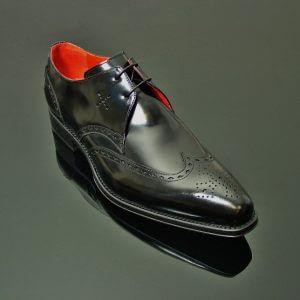 Manfreds Shoe Lugosi